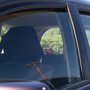 MPD says leaving dogs in a hot car is a very serious crime