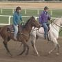 Oklahoma Training Track opens for spring training