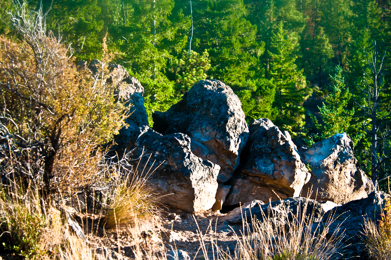 Boulders on Peterson Ridge on the Deschutes National Forest (USDA Forest Service)