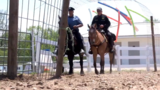 Michigan Mounted Divisions recruit and train more riders