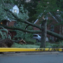 Storms take down trees, damage homes in College Park