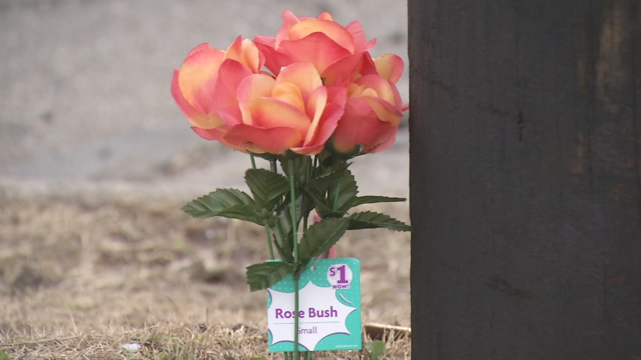 Family reacts after memorial for hit and run victim is vandalized for a second time (WKEF/WRGT)