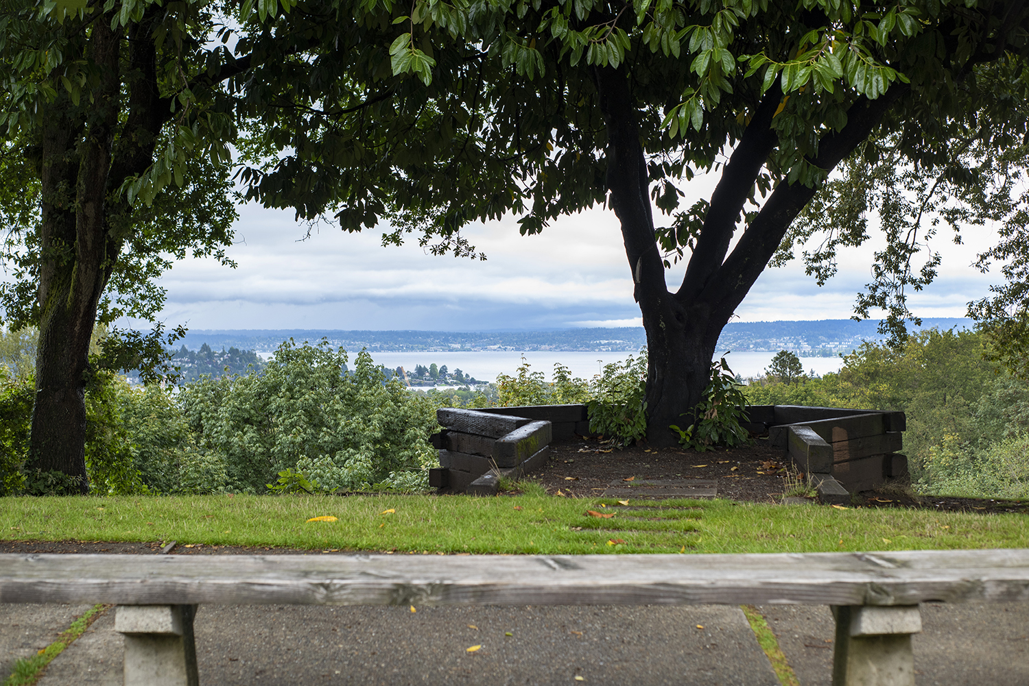Situated right beside the busier Boren Park and above Volunteer Park, Louisa Boren Lookout offers sweeping views of Lake Washington. Pick a bench along the paved pathway and enjoy a bit of fresh air.{ }(Image: Rachael Jones / Seattle Refined)