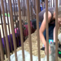 Children sell livestock at Big Sky Country State Fair
