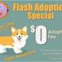 Adoption fees waived for one day as shelter reaches capacity