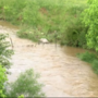 BREAKING: 2-year-old child dead after being swept away in Washington County, TN creek