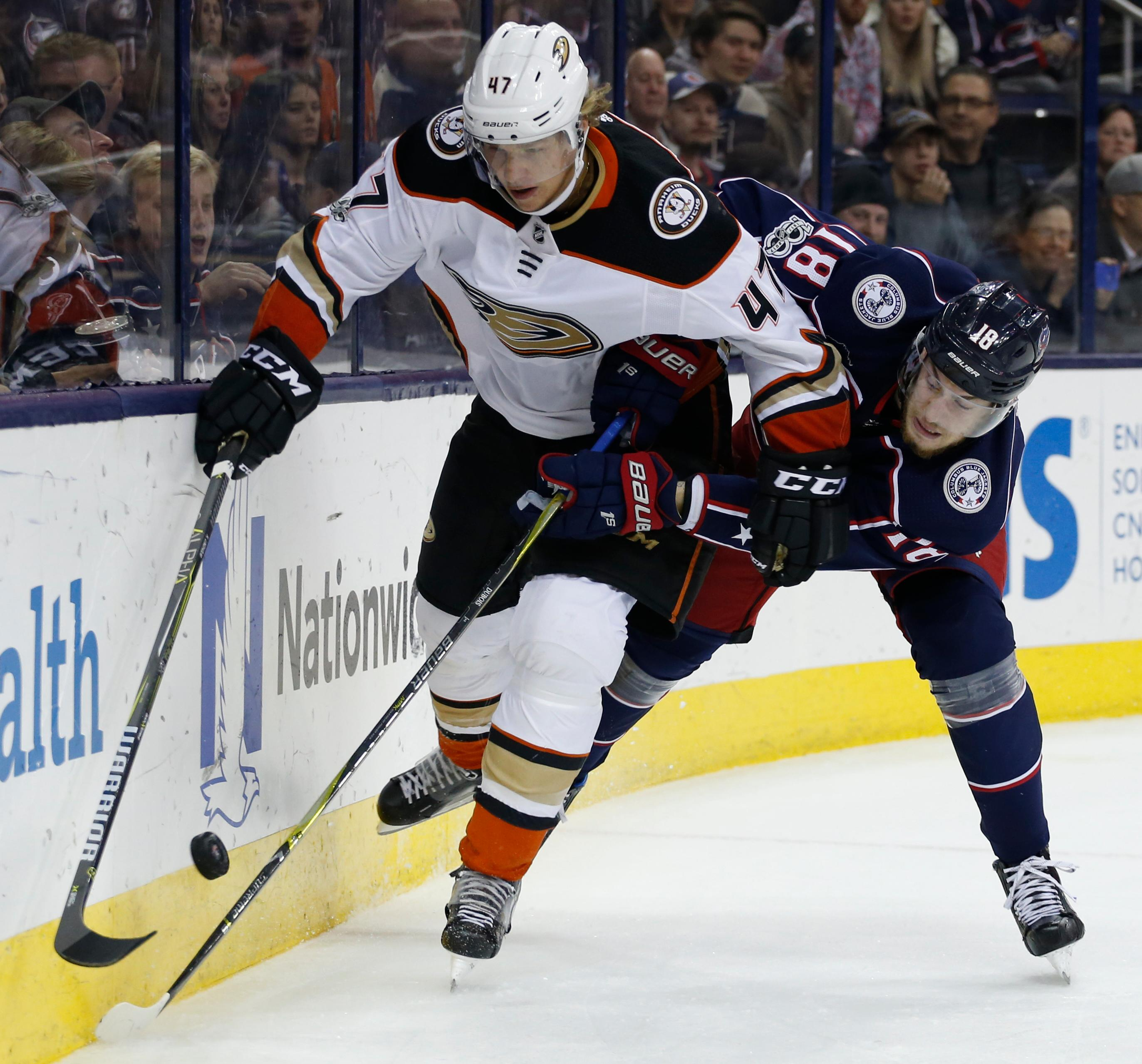 Anaheim Ducks' Hampus Lindholm, left, of Sweden, and Columbus Blue Jackets' Pierre-Luc Dubois fight for the puck during the second period of an NHL hockey game Friday, Dec. 1, 2017, in Columbus, Ohio. (AP Photo/Jay LaPrete)