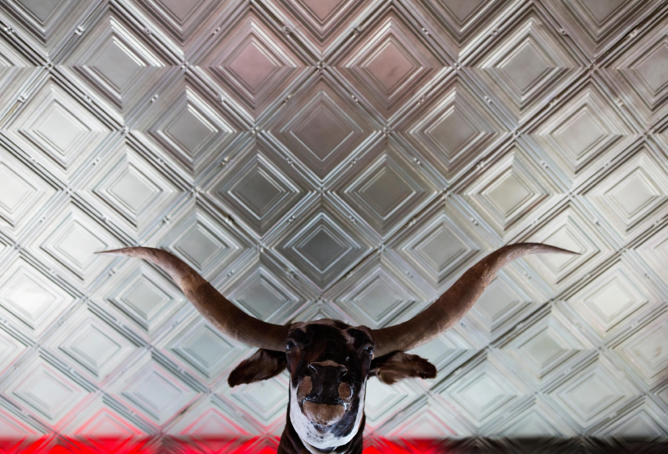 A stuffed bull hangs over the door at Tini Bigs Lounge. (Sy Bean / Seattle Refined)