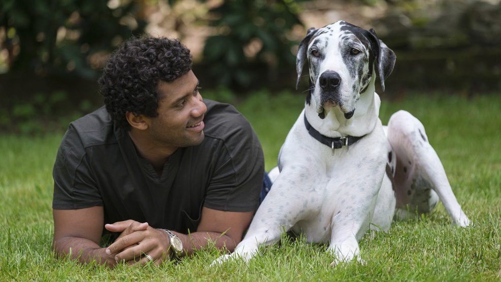 Russell Wilson fronts new PSA raising awareness of link between domestic & animal abuse