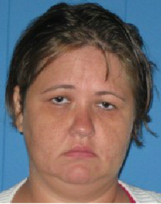 <p>Lena L. Renfroe</p><p>Charges: 2 counts Obtaining Property By False Pretense</p>