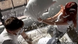 Thousands do battle on International Pillow Fight Day