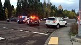 Police close part of Tualatin Valley Highway, investigate pedestrian hit by driver