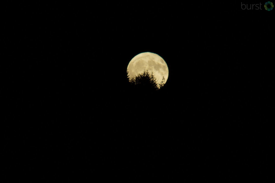 Photo of the Harvest Moon over Eel Lake near Tugman, Oregon, by Debbie Tegtmeier. Share your videos & photos #LiveOnKVAL at BURST.com/KVAL