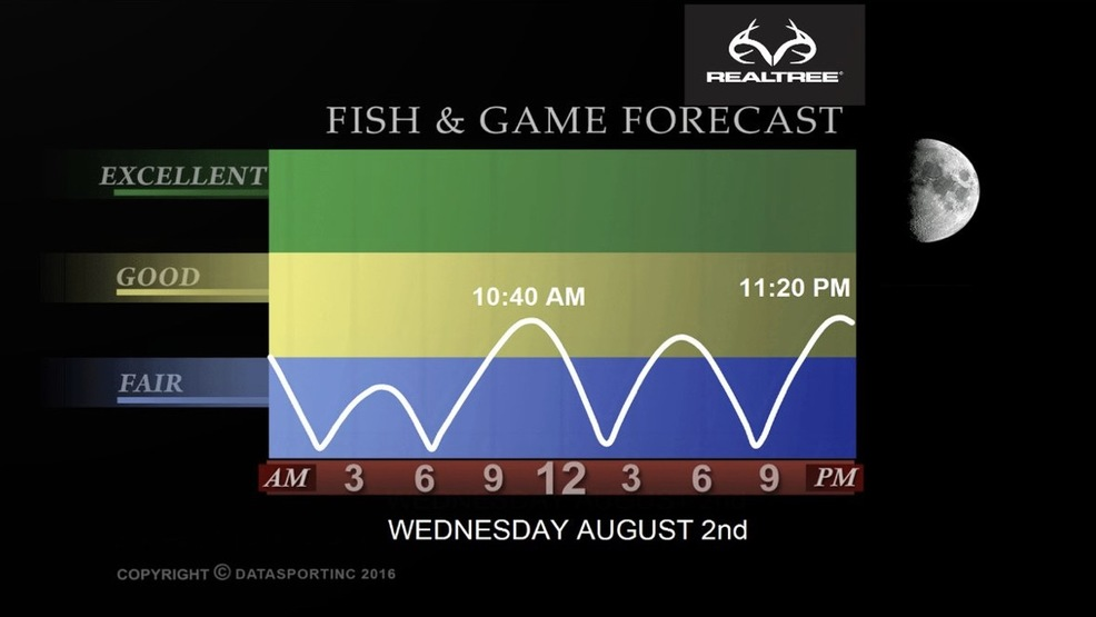 Wednesday, August 2nd Fish & Game Report | WCHS