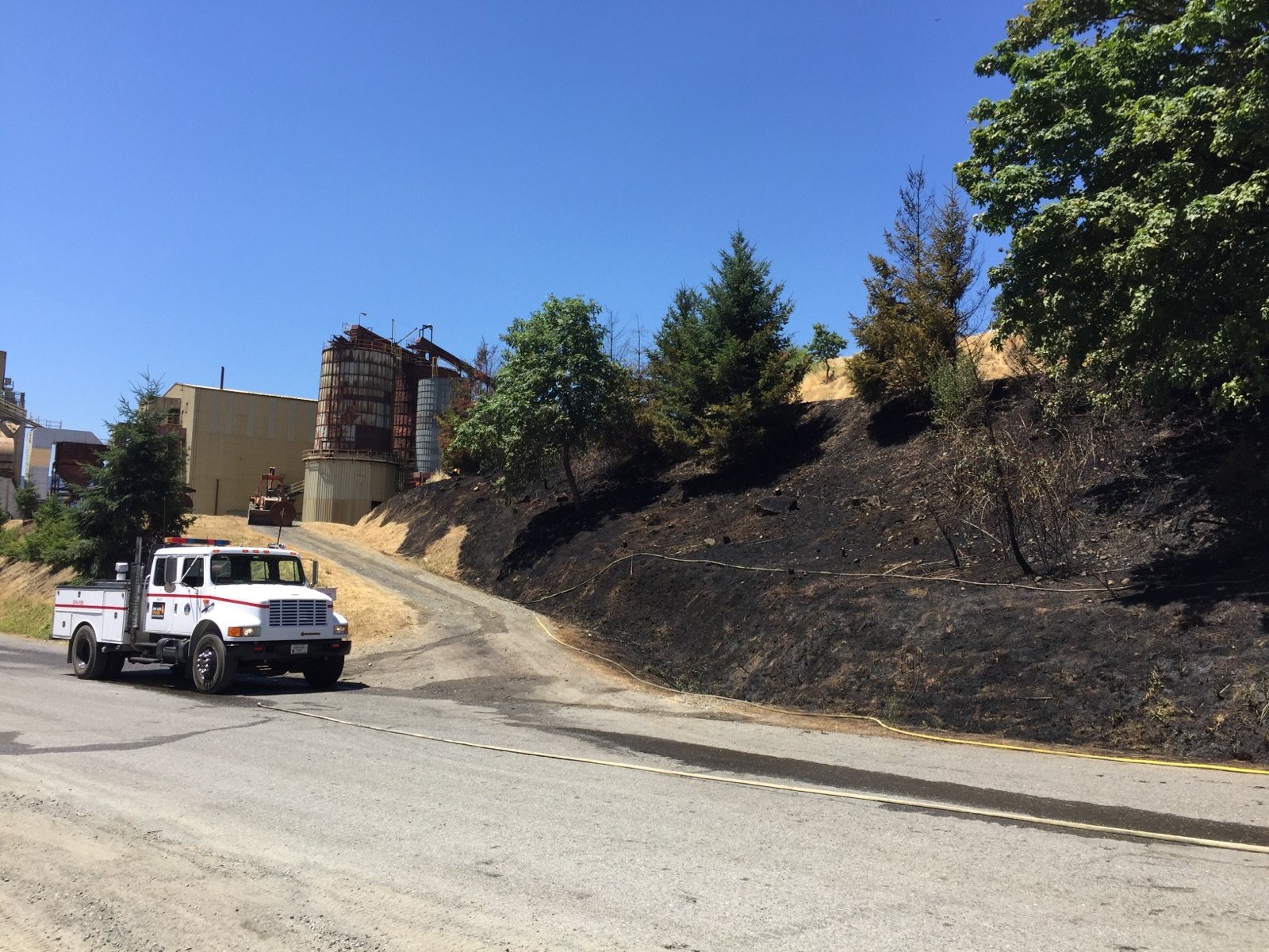 Firefighters responded to a natural cover fire on the hillside behind D.R. Johnson Lumber Company in Riddle. (Photo courtesy DFPA)