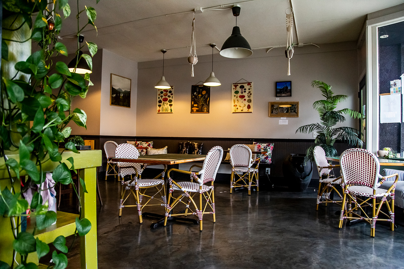 "To adhere to COVID restrictions and guidelines, indoor seating has been rearranged for proper social distancing measures. Cafe Mia features seasonal, locally-sourced and ethical cuisine - every dish is prepared in house by Mia herself. Cafe Mia is tucked away near the West Seattle Junction on SW Oregon Street. The perfect spot for brunch after hitting the farmers market on Sunday! Find them on Instagram{&nbsp;}<a  href=""https://www.instagram.com/cafe.mia/?hl=en"" target=""_blank"" title=""https://www.instagram.com/cafe.mia/?hl=en"">@cafe.mia</a>. (Image:{&nbsp;}Samantha Witt / Seattle Refined)"