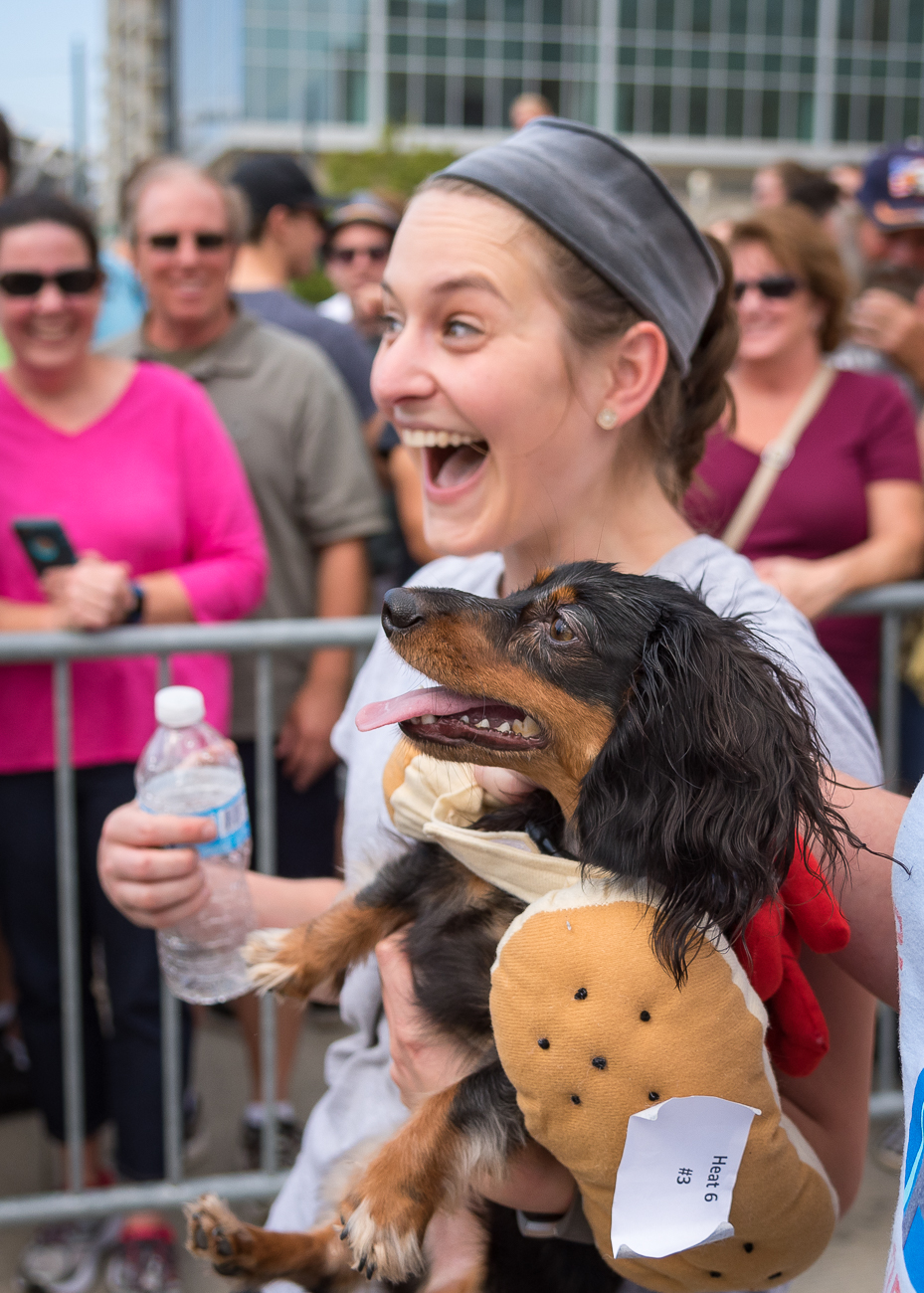 Gloria McNerney was all smiles as her dachshund, Frankie, was crowed the winner of this year's Running of the Wieners. / Image: Phil Armstrong, Cincinnati Refined // Published: 9.21.18