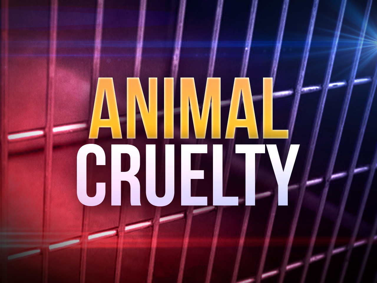 (image: MGN){ }Couple charged with 42 counts of animal cruelty after Theodore Dawes traffic stop