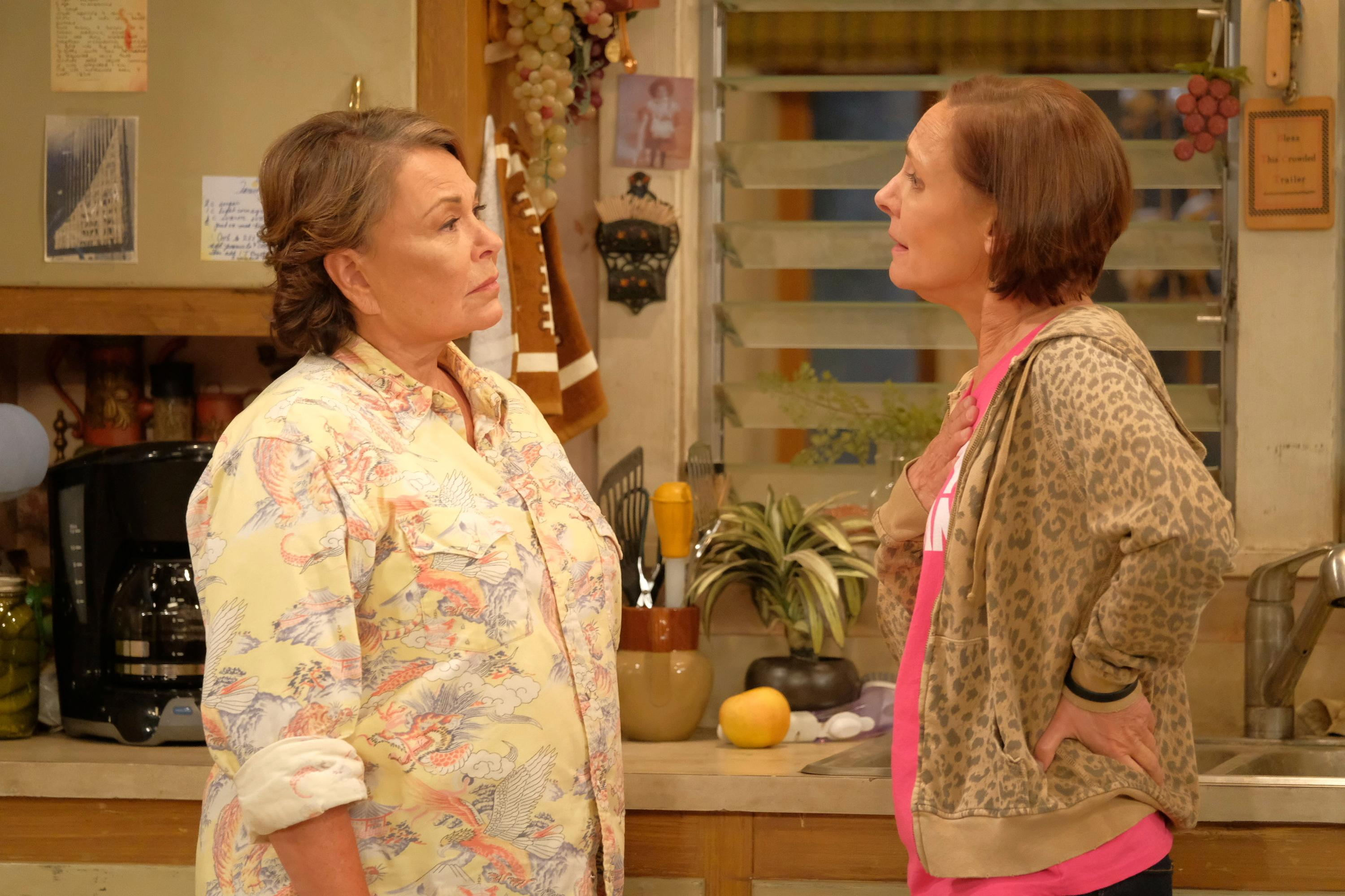 "In this image released by ABC, Roseanne Barr, left, and Laurie Metcalf appear in a scene from the reboot of the popular comedy series ""Roseanne."" 18.4 million viewers tuned in for its premiere. The unprecedented sudden cancellation of TV's top comedy has left a wave of unemployment and uncertainty in its wake. Barr's racist tweet and the almost immediate axing of her show put hundreds of people out of work. (Adam Rose/ABC via AP)"