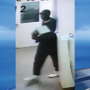 Animal shelter releases pictures of safe thief suspect