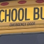 BB gun shatters school bus window, lieutenant says