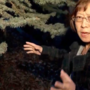Woman recounts finding dead animals in her yard, Provo warned to look out for cougar