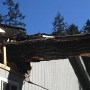 Tree falls on home near Gig Harbor
