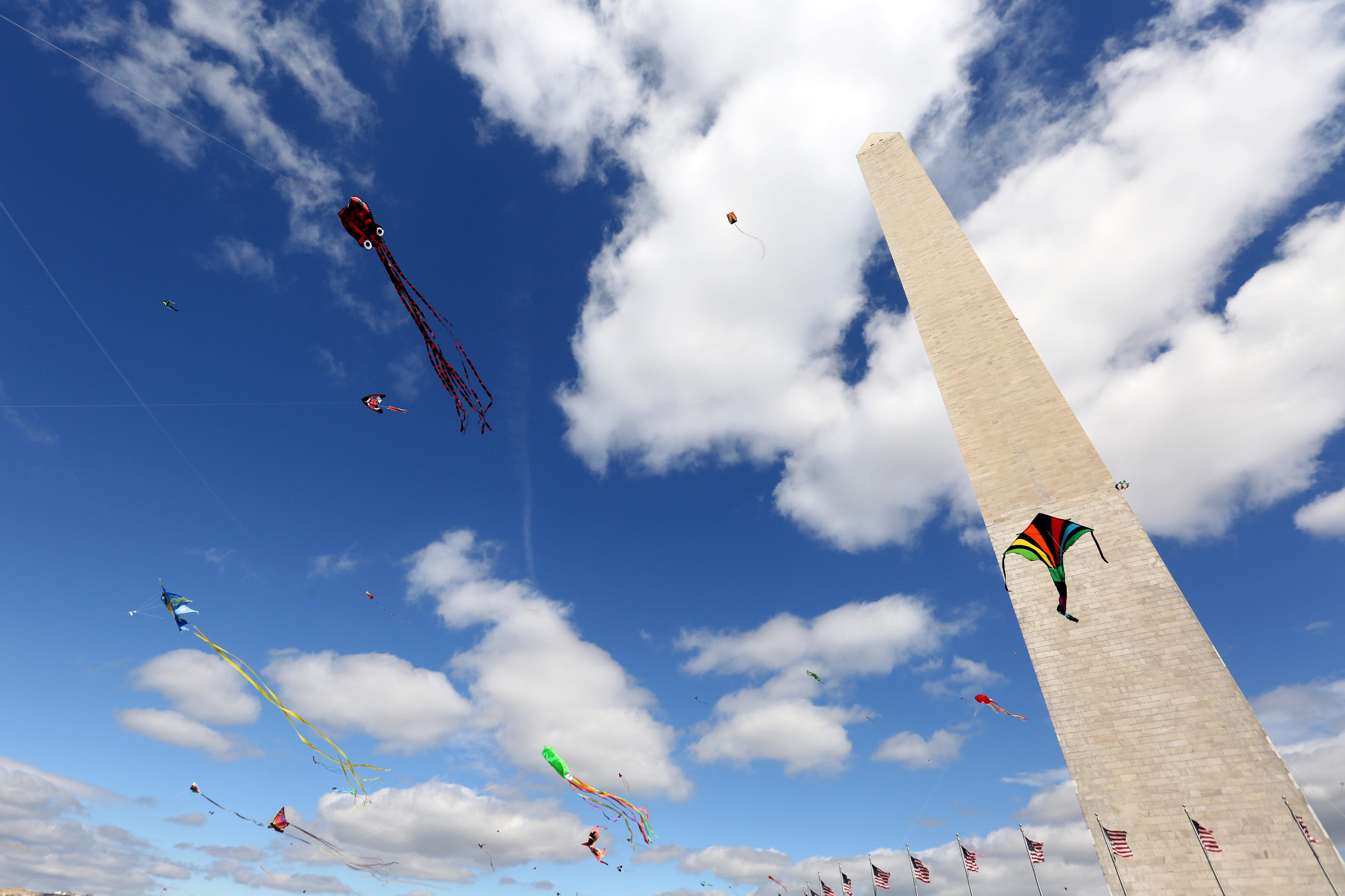 April, 2017. Kites fly over the National Mall on April Fool's Day.{&amp;nbsp;} (Amanda Andrade-Rhoades/DC Refined)<p></p>