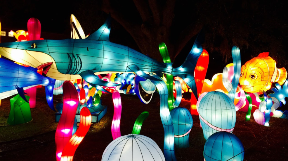 dragon lights chinese lantern festival debuts in reno krnv