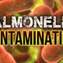 Reported salmonella cases up to 36 in mid-Missouri