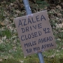 Resident wants more signs before Azalea road closure, so she puts up her own sign