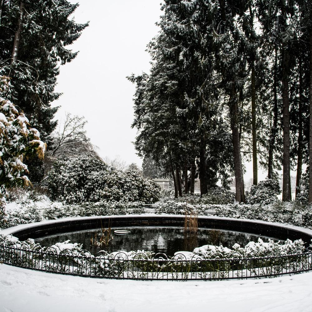 Volunteer Park is a wonderful corner of Seattle on any given day rain or shine, but get some snow in the mix and you have actual PNW magic. Weather like we've been seeing in town today only happens once every couple years, so this girl and her dogs took full advantage of it. Click on for more photos of the pretty little snow globe Volunteer Park transformed into this morning. (Image: Chona Kasinger / Seattle Refined)