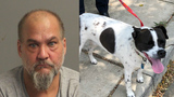 Maryland man arrested for allegedly dragging dog behind car to punish it for escaping