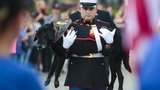 Marine dog with cancer gets tear-filled farewell