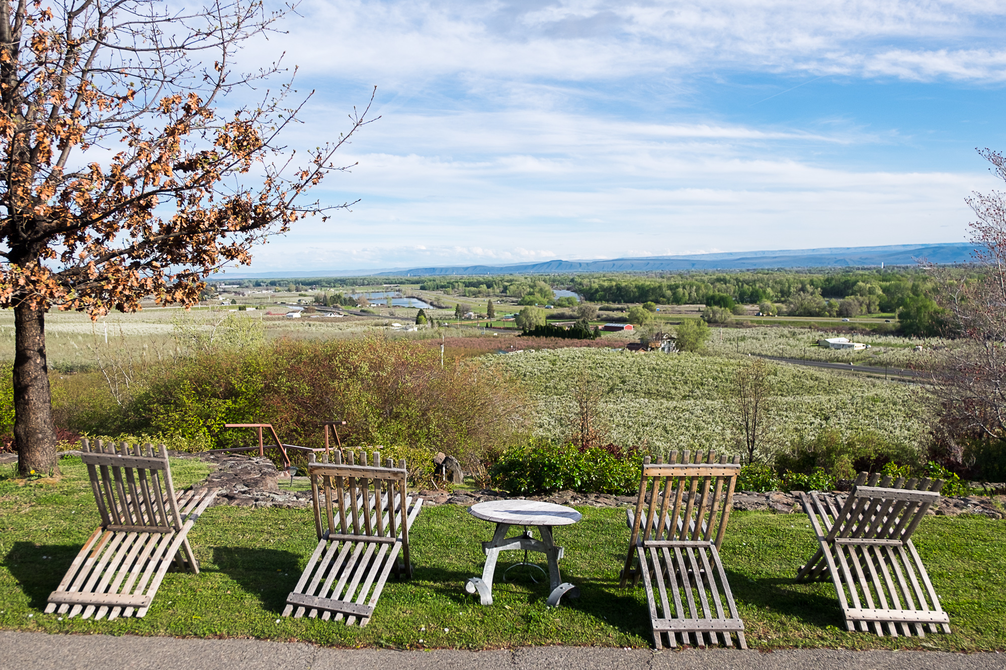Windy Point Vineyards (Image: Paola Thomas/Seattle Refined)