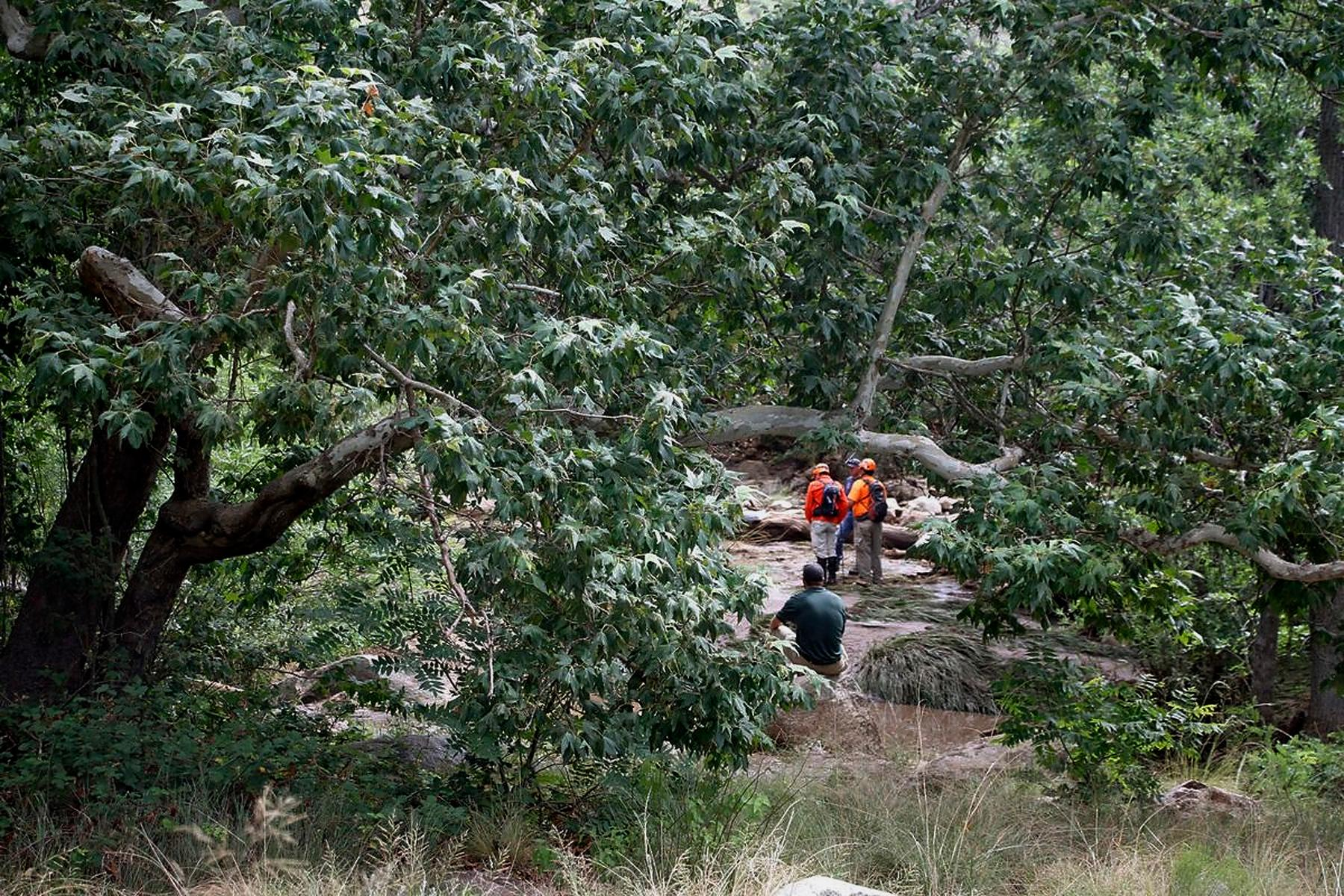 Tonto Search and Rescue volunteers search for missing swimmers near the Water Wheel Campground on Sunday morning, July 16, 2017, in the Tonto National Forest, Ariz., following Saturday's deadly flash-flooding at a normally tranquil swimming area in the national forest. The flooding came after a severe thunderstorm pounded down on a nearby remote area that had been burned by a recent wildfire, Water Wheel Fire and Medical District Fire Chief Ron Sattelmaier said. (Alexis Bechman/Payson Roundup via AP)