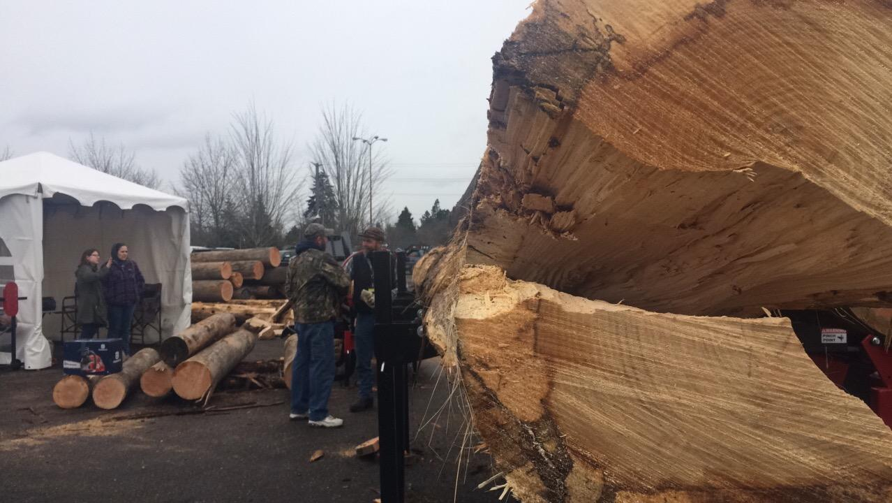 The Oregon timber industry hopes President Donald Trump will deliver on his promise to bring back jobs in logging. (SBG photo)