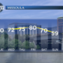 Early summer-like temperatures this week