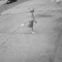 Rock-throwing man burglarizes Oklahoma City business