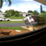 Doorstep surveillance cameras capture package thieves in the act