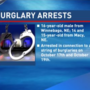 Three teens arrested and charged after a string of business break-ins
