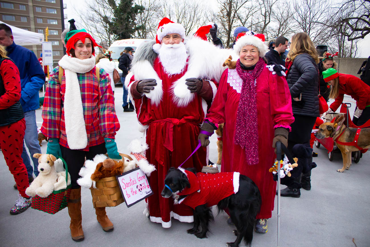 "Rowan can be spotted in this group which called themselves, ""Santa's Gone to the Dogs!"" They won the prize for Best Dressed in a Group of 3 or More.{ }/ Image: Katie Robinson // Published: 12.9.18"