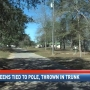 Foley teens tied to pole, thrown in trunk in robbery setup