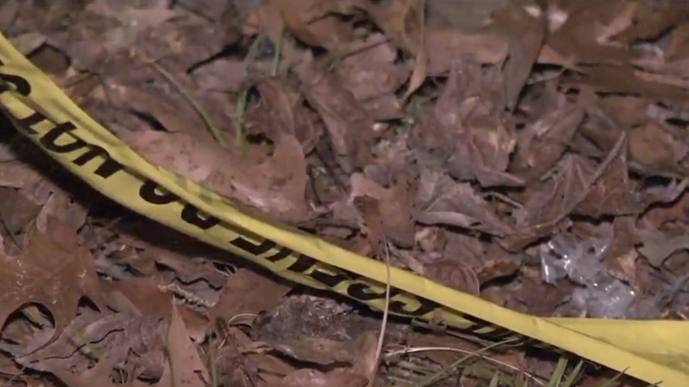 Pine Bluff Police Department investigates homicide that leaves 1
