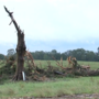 """You could hear it. You could see it."" Pickens Co. tornado left destruction in it's wake"