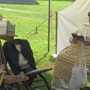 'Living historians' part of Ft. Kearny's summer holiday traditions
