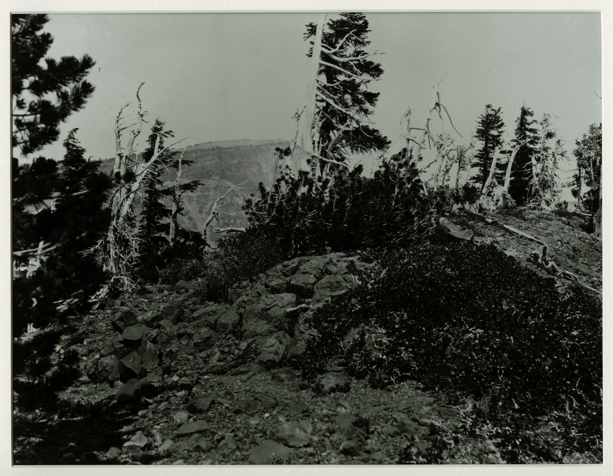 Portion of the crater lip on top of Wizard Island with Llao Rock in the distance. Photographed by J.S. Diller in the 1890s or 1901 during the USGS survey of the Crater Lake area.