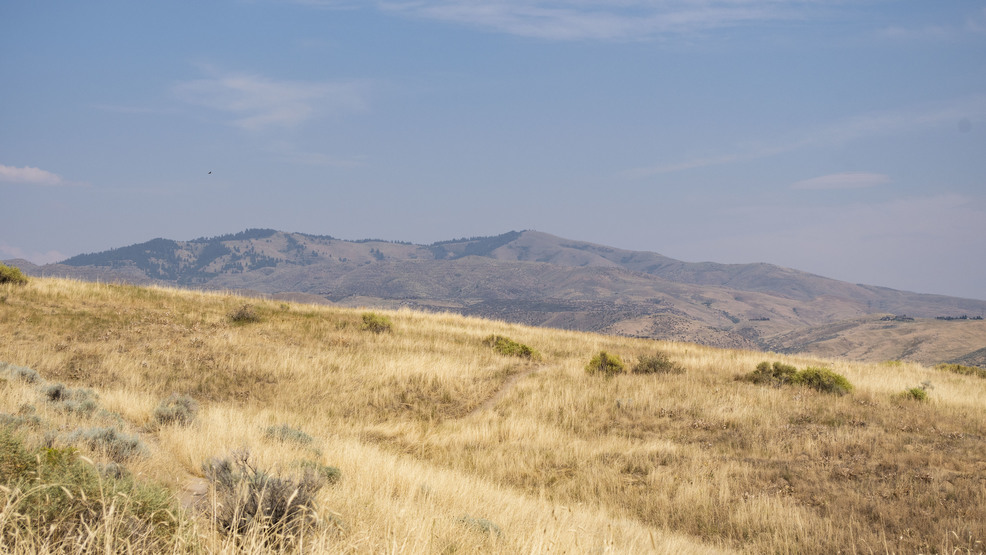 Fighting the invasion in the Boise Foothills