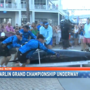 Fish weighing 795 lbs. caught at Blue Marlin Grand Championship